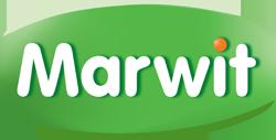 Marwit Sp. z o.o.